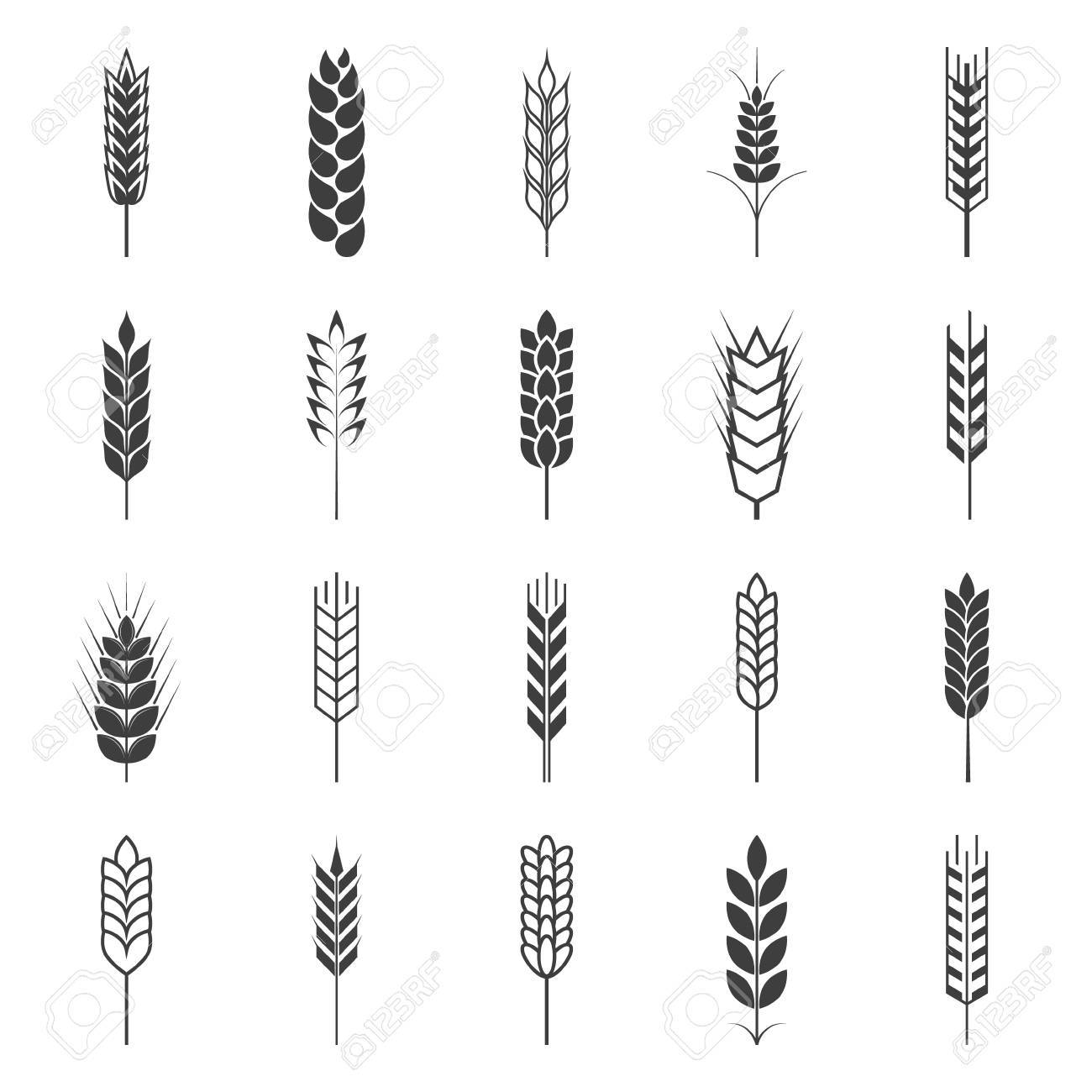 Set of simple wheat ears icons and design elements. Vector EPS8 illustration. - 50384872