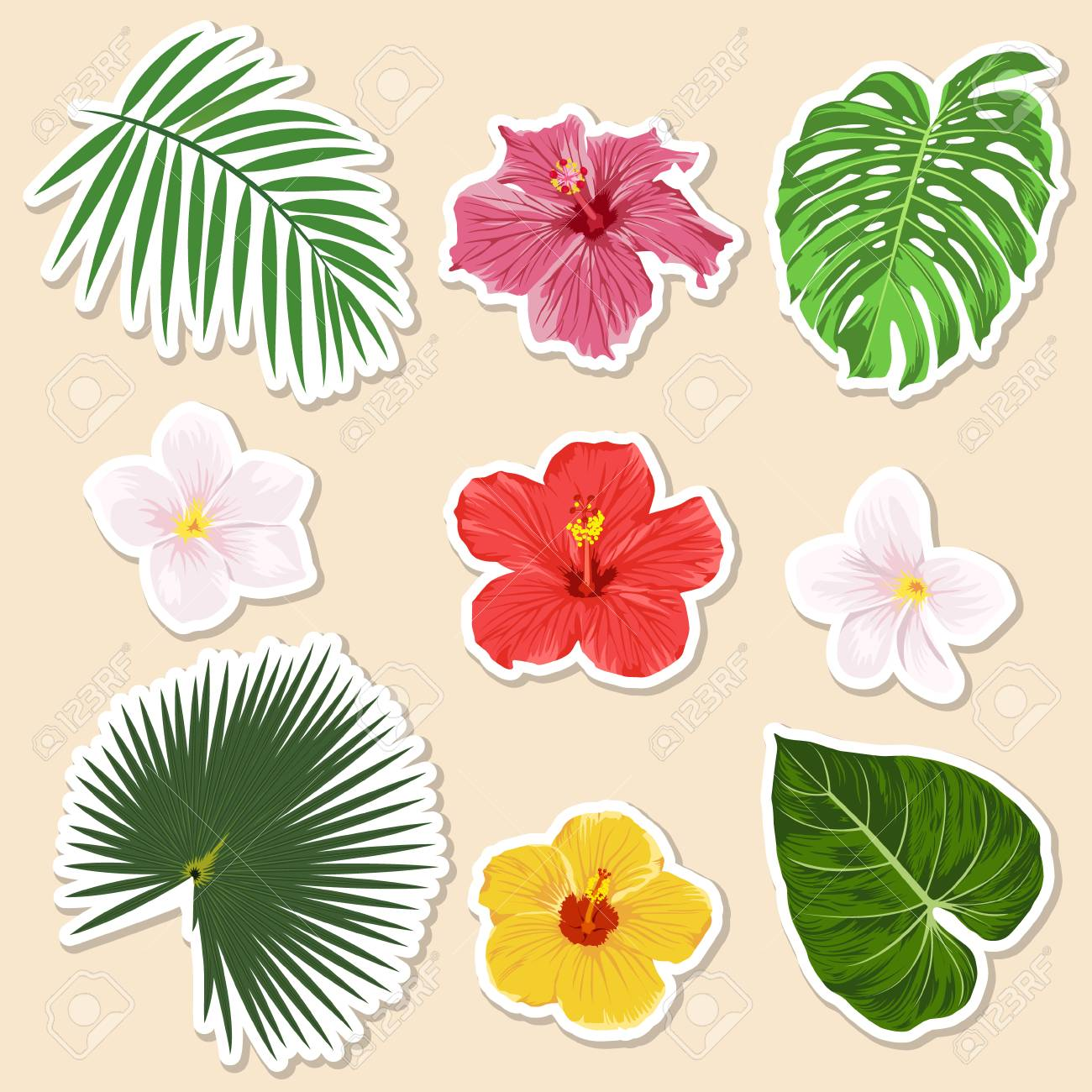 Vector vector different tropical plants flowers and leaves paper sticker and icon set closeup isolated design elemnts exotic and travel collection