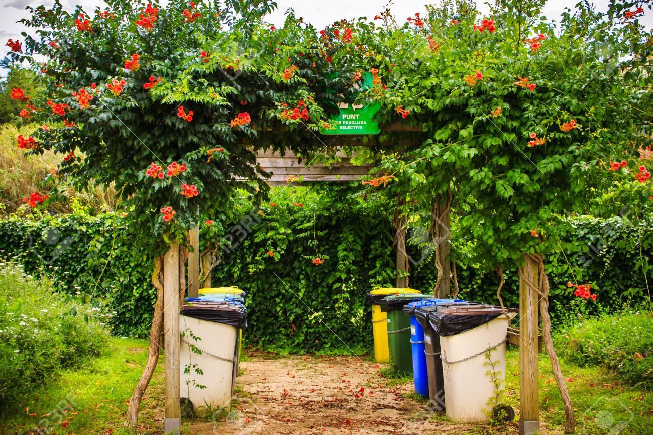 Cubos De Basura Para Una Recolección Separada De Basura En Un Parque ...