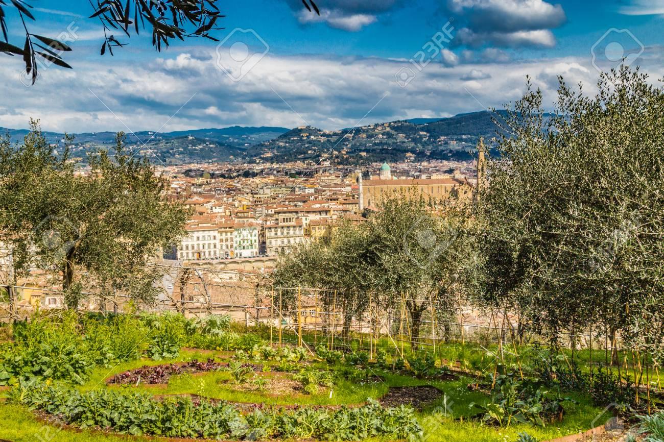Famoso Panorami Mozzafiato Dei Palazzi E Chiese Di Firenze, Toscana Foto  XL02
