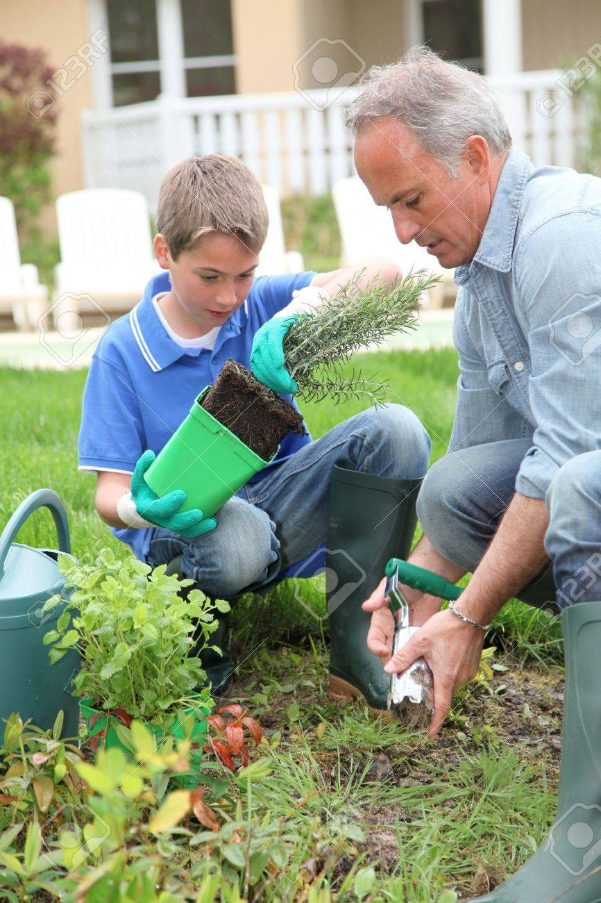 Father and son planting flowers in house garden Stock Photo - 9480238