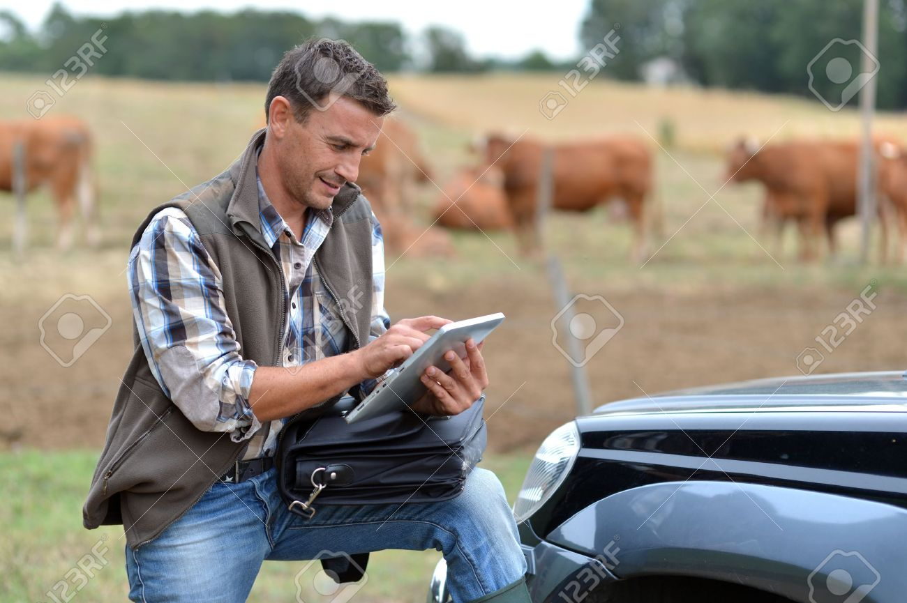 Breeder in farm using digital tablet Stock Photo - 15435207
