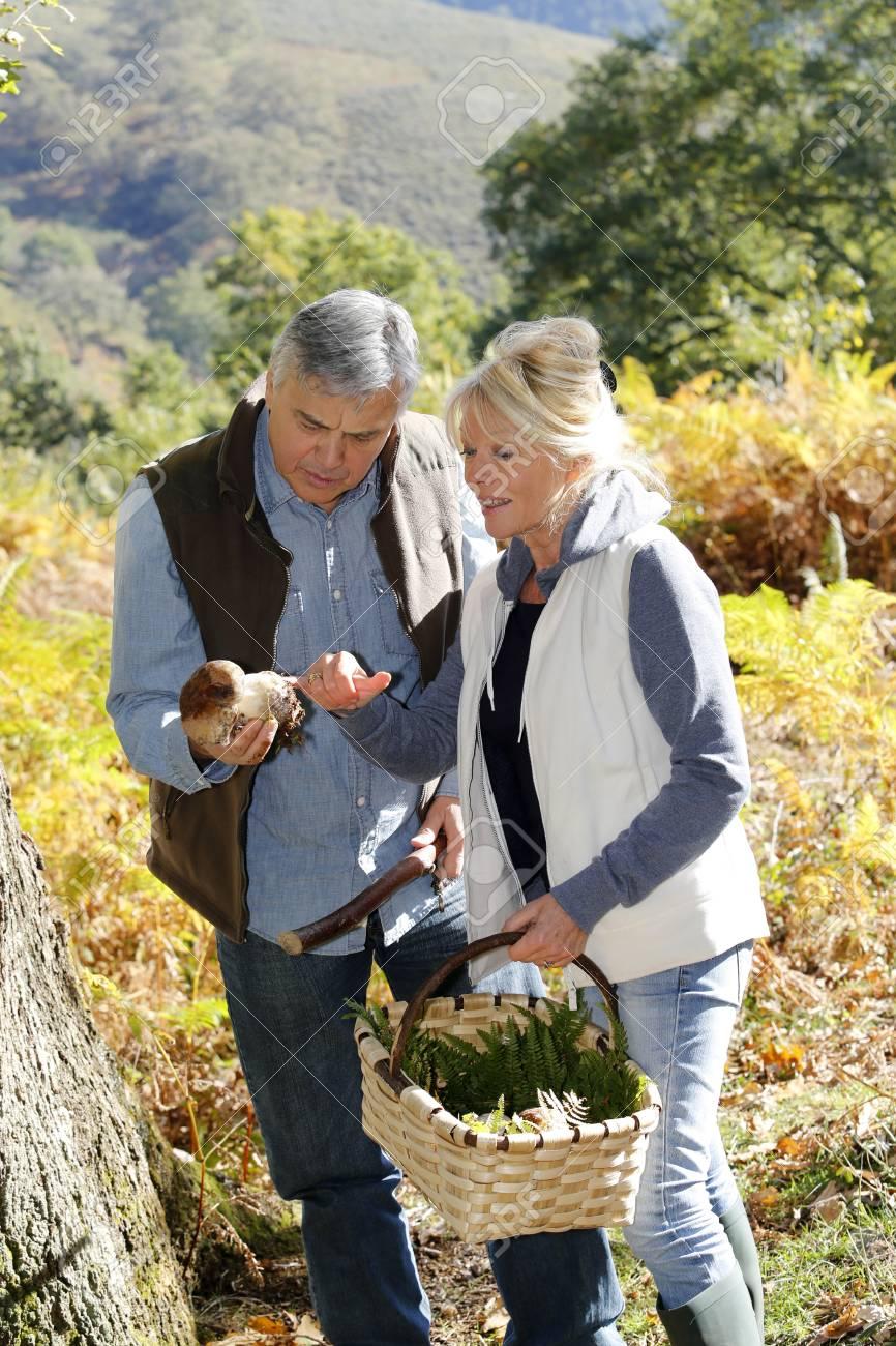 Senior couple in forest picking mushrooms Stock Photo - 16321398