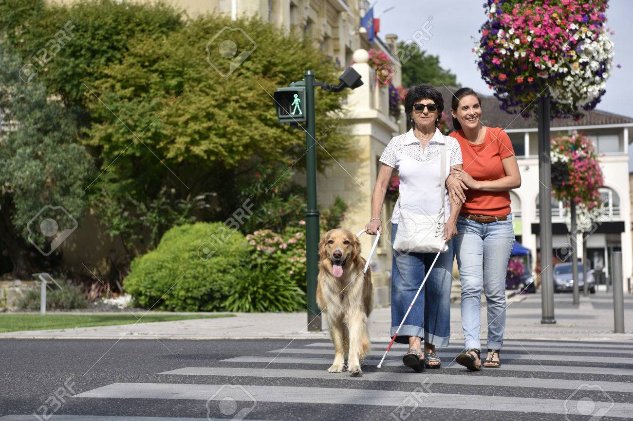 Senior blind woman crossing the street with assistance Standard-Bild - 60226948