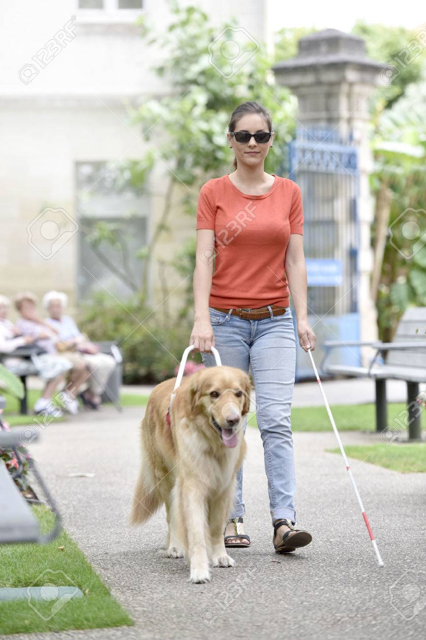 60226977-Blind-woman-walking-in-park-with-dog-assitance-Stock-Photo.jpg