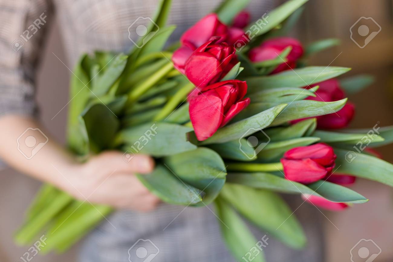 Young woman holding a beautiful bunch of red tulips in her hands stock photo young woman holding a beautiful bunch of red tulips in her hands spring present for a girl in a grey dress flowers bouquet izmirmasajfo