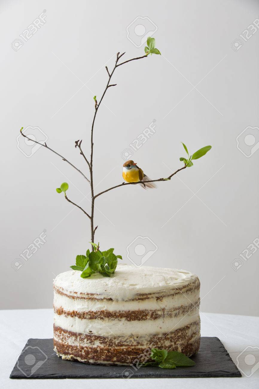 Joyeux Anniversaire Kaya 55891988-d%C3%A9licieux-g%C3%A2teau-d-anniversaire-avec-une-branche-d-arbre-des-oiseaux-des-bougies-et-le-num%C3%A9ro-2-comm