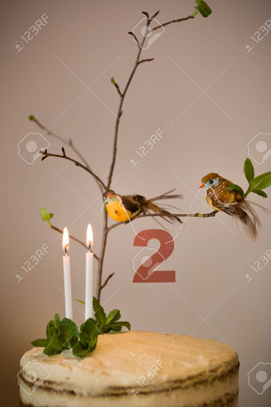 Delicious Birthday Cake With Branch Of A Tree Birds Candles