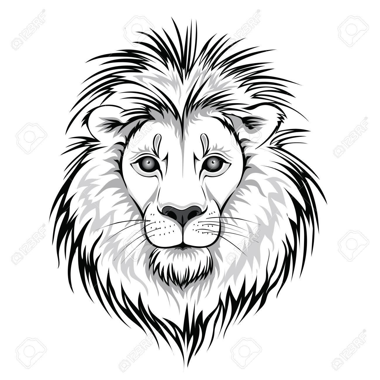 lion head logo vector illustration of animal isolated on white rh 123rf com vector lion fish vector lion head
