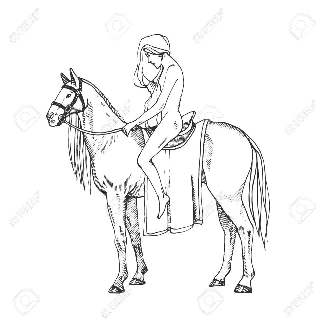 Nude women riding a horse. Lady Godiva. Contour illustration. Stock Vector  - 73587592