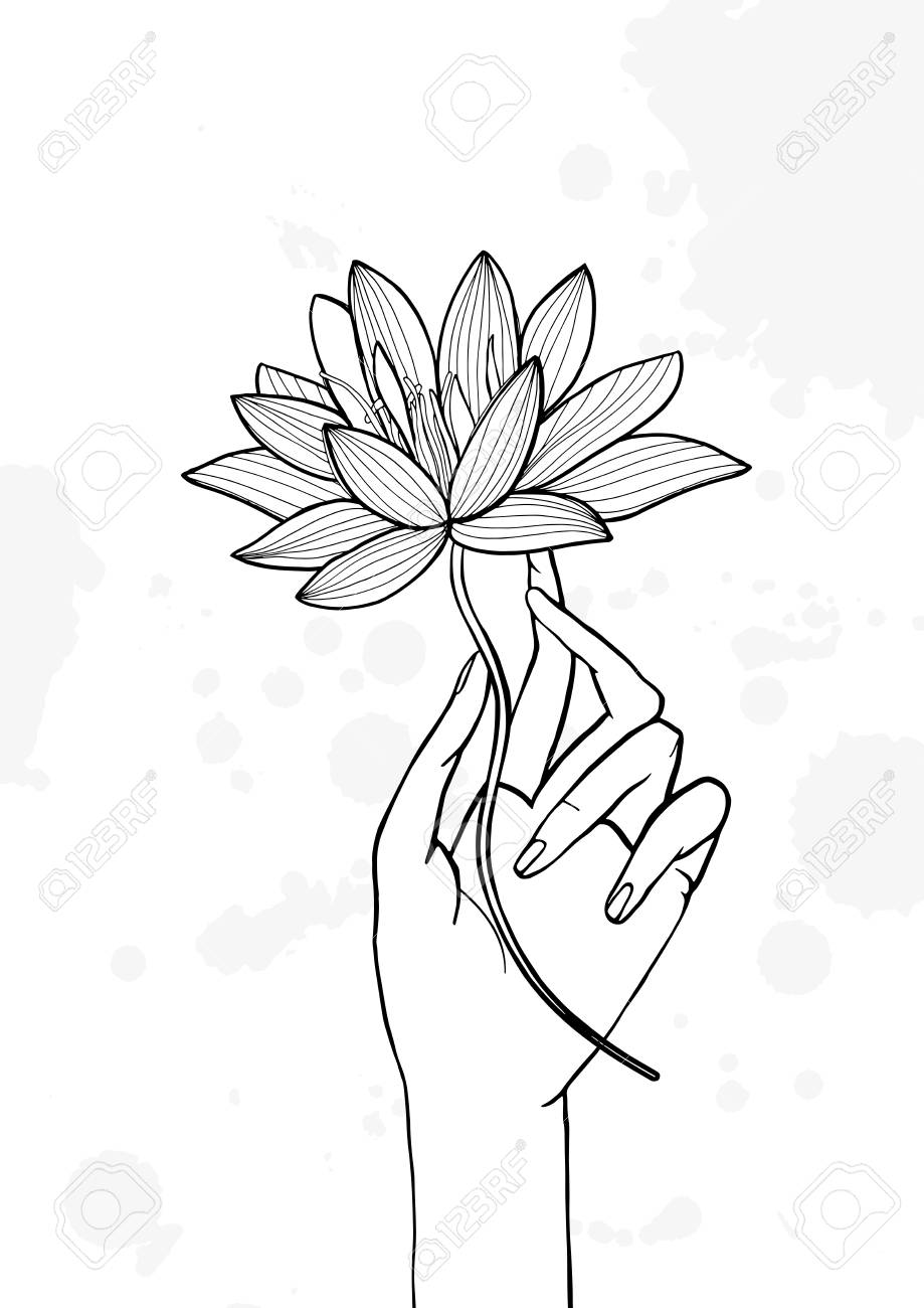 Hand Holding Lotus Flower Contour Hand Drawn Illustration Yoga