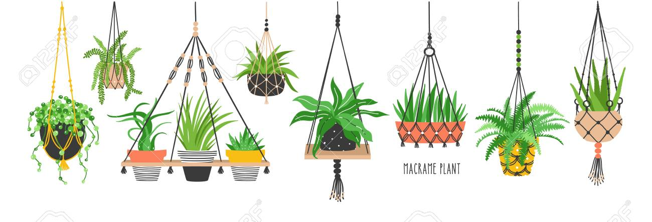 Set of macrame hangers for plants growing in pots. Bundle of hanging planters made of cotton cord, beautiful handmade home decorations isolated on white background. Cartoon flat vector illustration. - 96321255