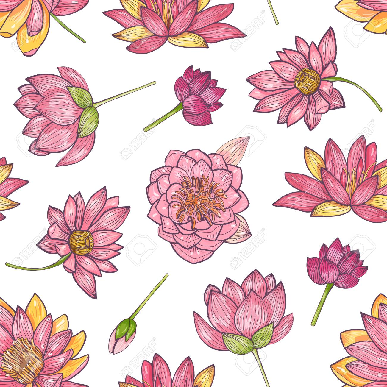 Floral Seamless Pattern With Gorgeous Pink Blooming Lotus Hand