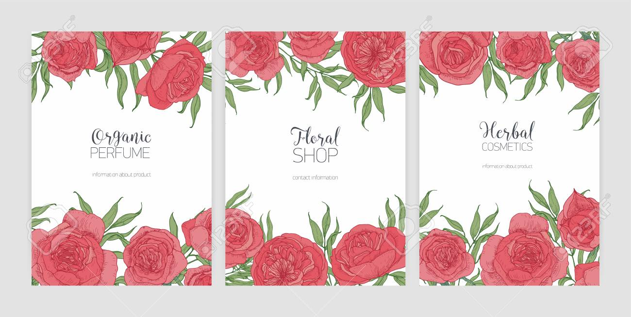 Collection Of Flyer Or Poster Templates With Gorgeous Pink Provence