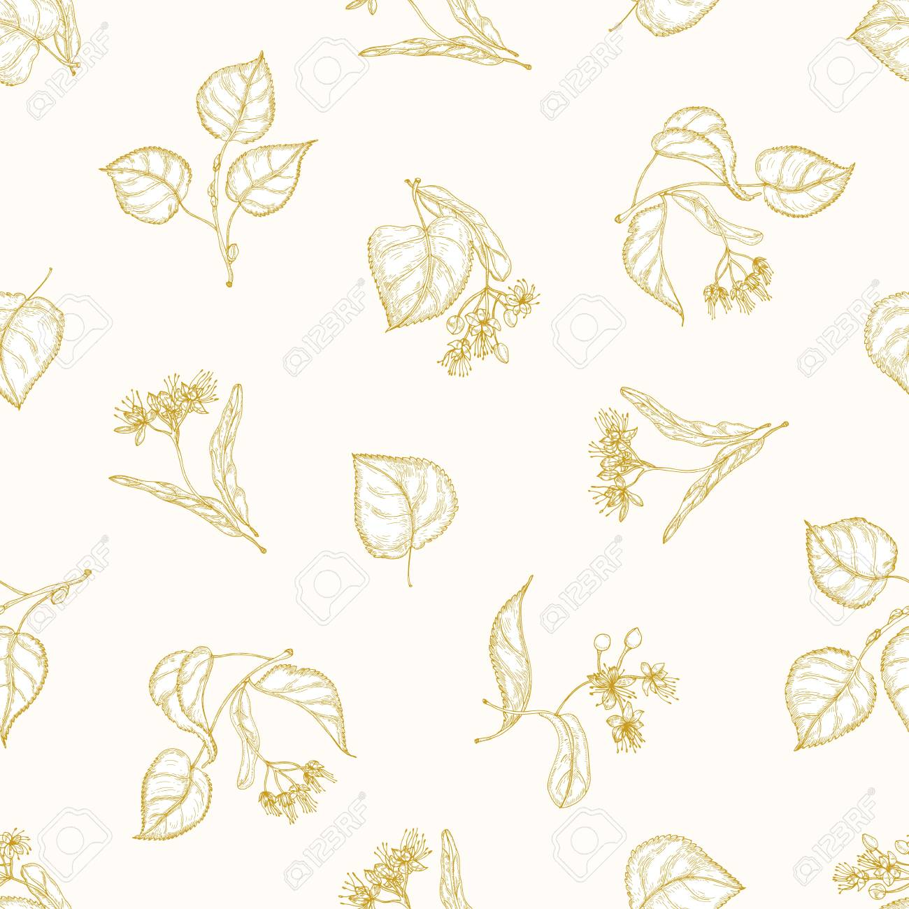 Monochrome seamless pattern with linden leaves and inflorescences hand drawn with contour lines on light background. Elegant vector illustration in antique style for fabric print, wrapping paper - 117295999