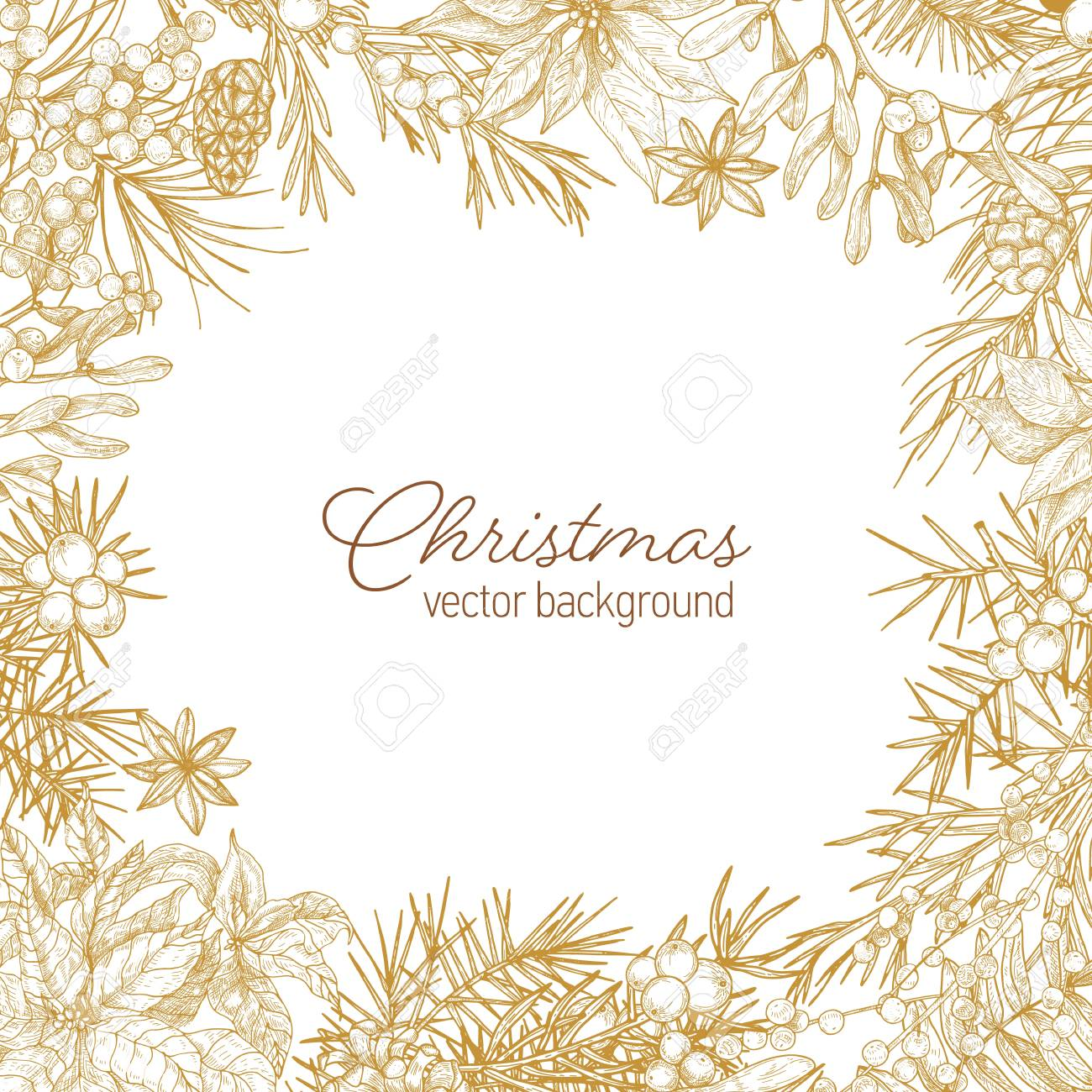 Vintage frame made of coniferous branches and cones, poinsettia leaves, juniper and mistletoe berries hand drawn with contour lines on white background and Merry Christmas wish. Vector illustration - 117296567