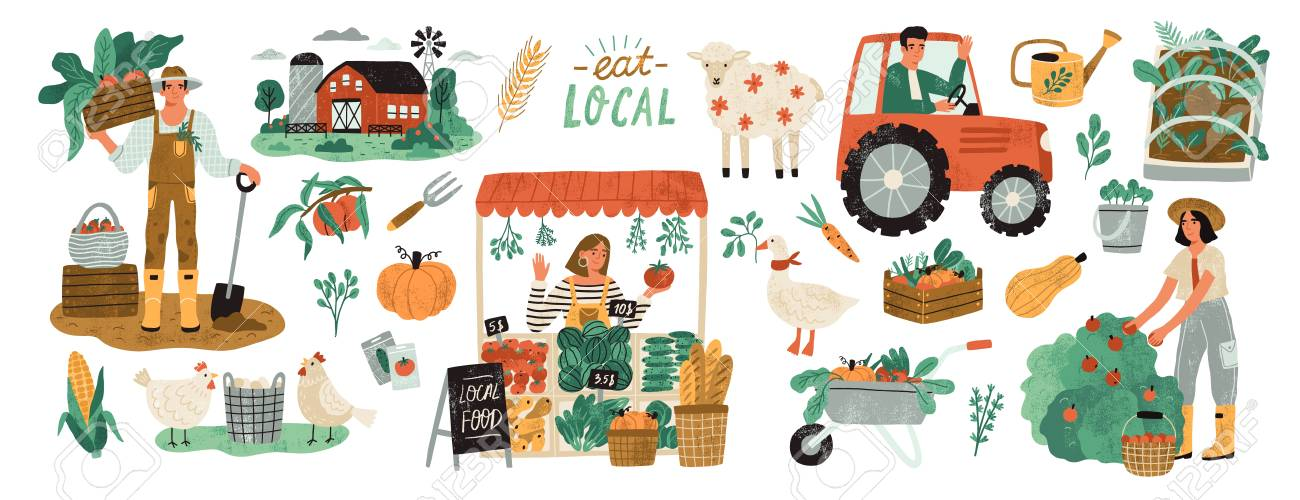 Local organic production set. Agricultural workers planting and gathering crops, working on tractor, farmer selling fruits and vegetables, farm animals, farmhouse. Flat cartoon vector illustration - 128183264