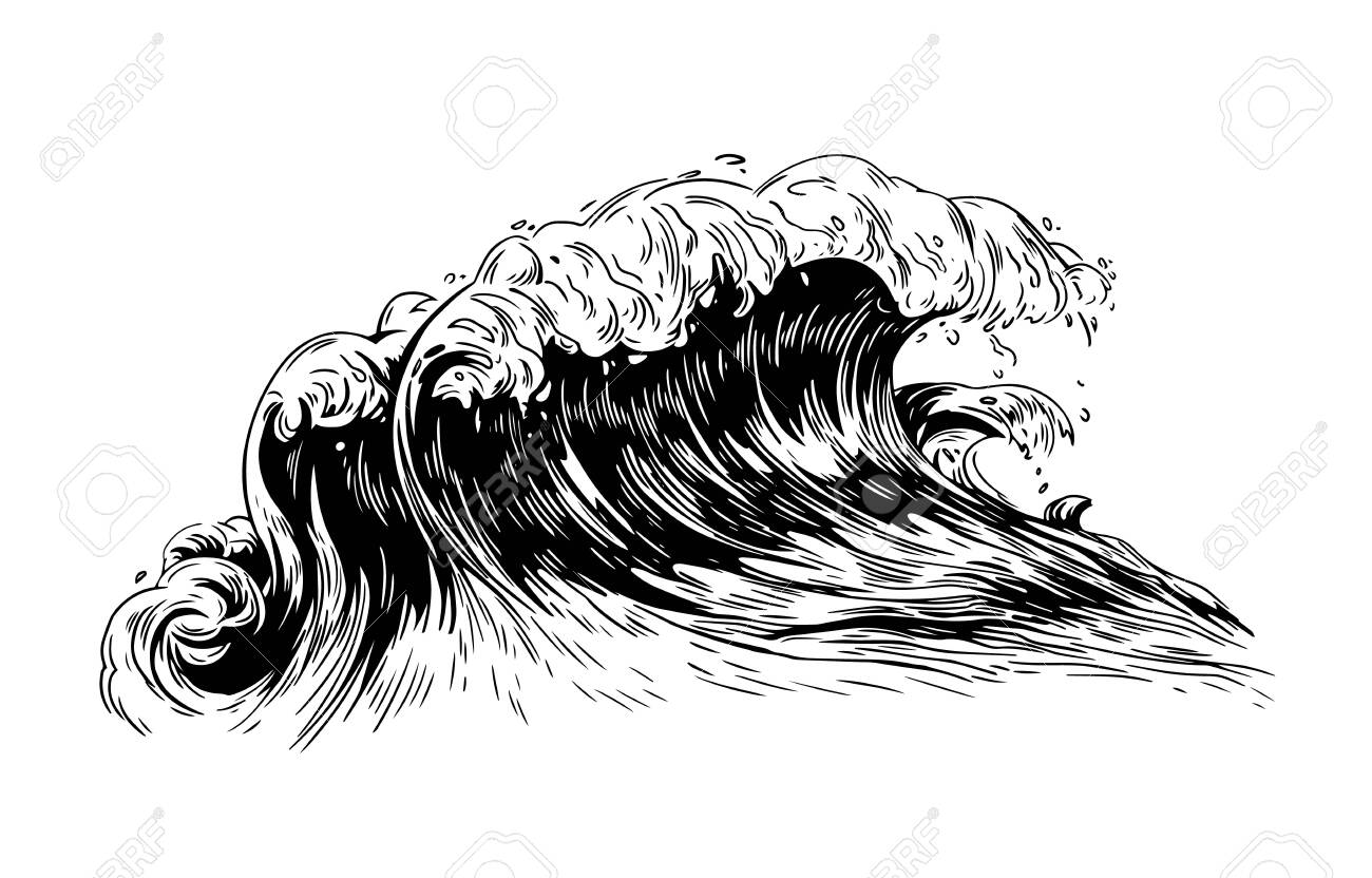 Monochrome drawing of sea or ocean wave with foaming crest  Oceanic