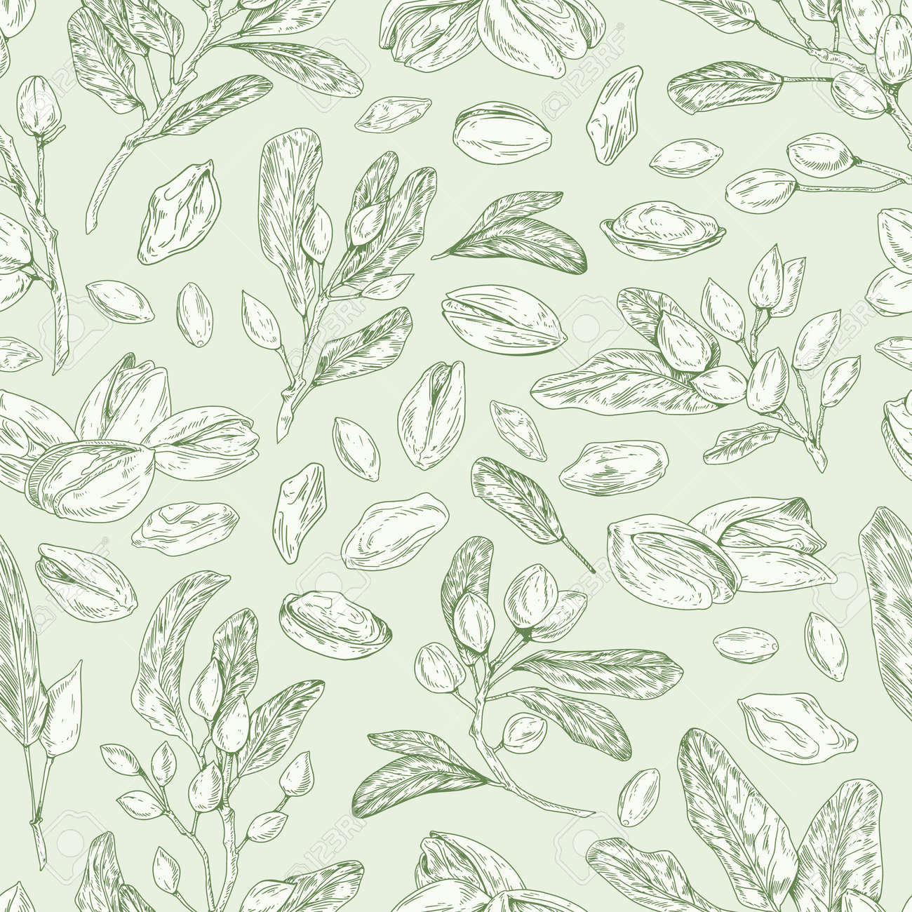 Seamless pistachio pattern with nuts, shells, branches and leaves. Monochrome design of endless monochrome background with pistaches. Hand-drawn colored vector illustration for printing - 164636795