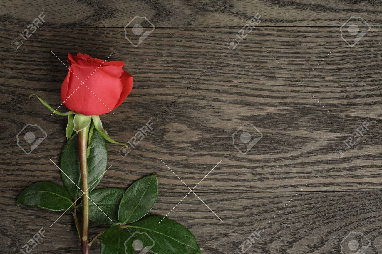 Romantic background with red rose on wood table - 36508359