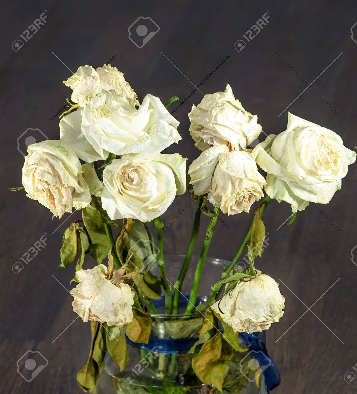 A Bouquet Of Dried Dying White Roses On A Black Background Stock