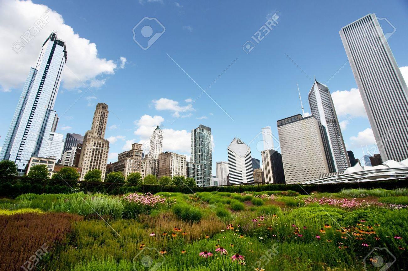 Chicago Skyline over Gardens Stock Photo - 7029427