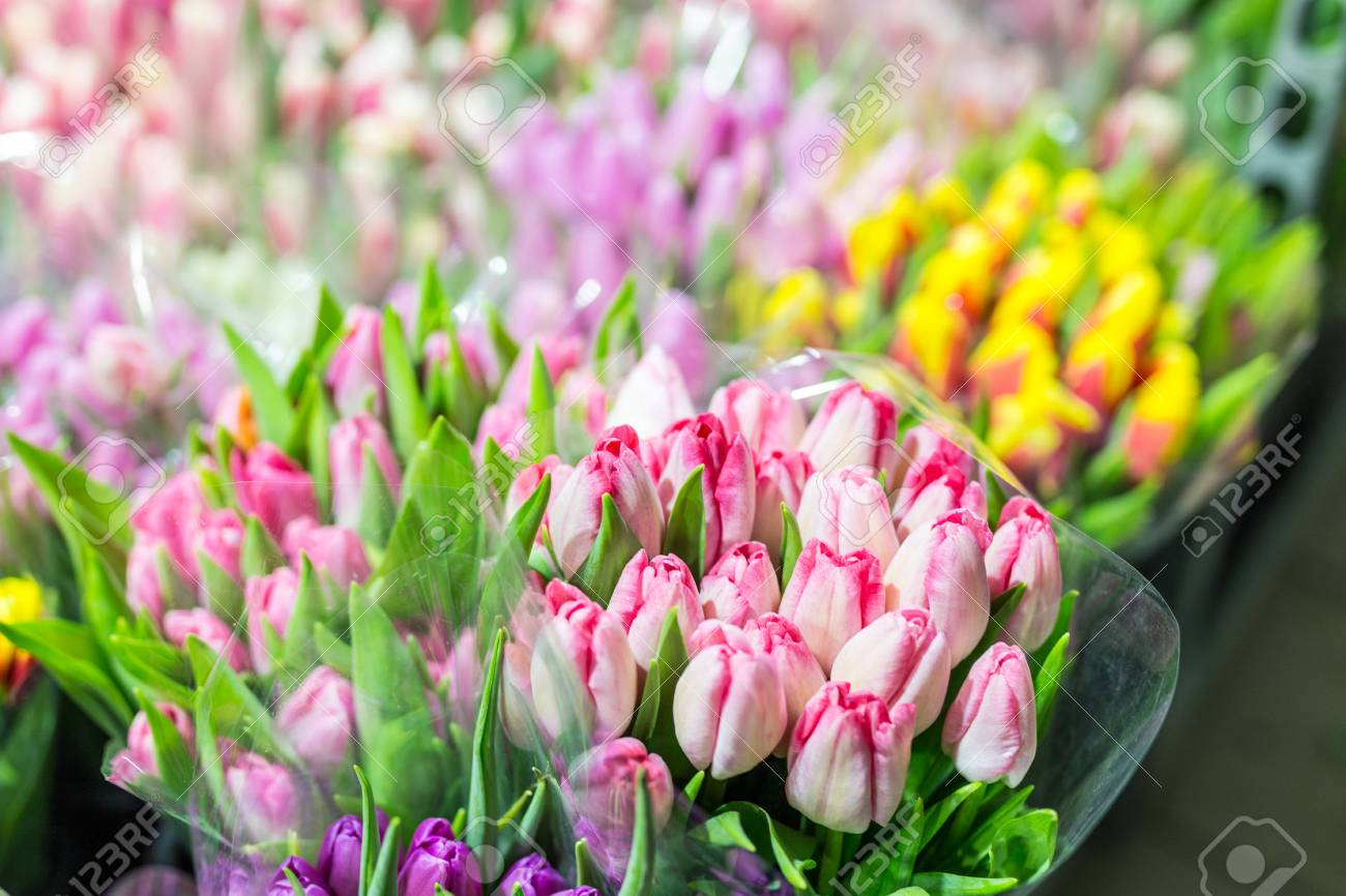 Beautiful Multicolored Flower Bouquets. Various Fresh Tulips.. Stock ...