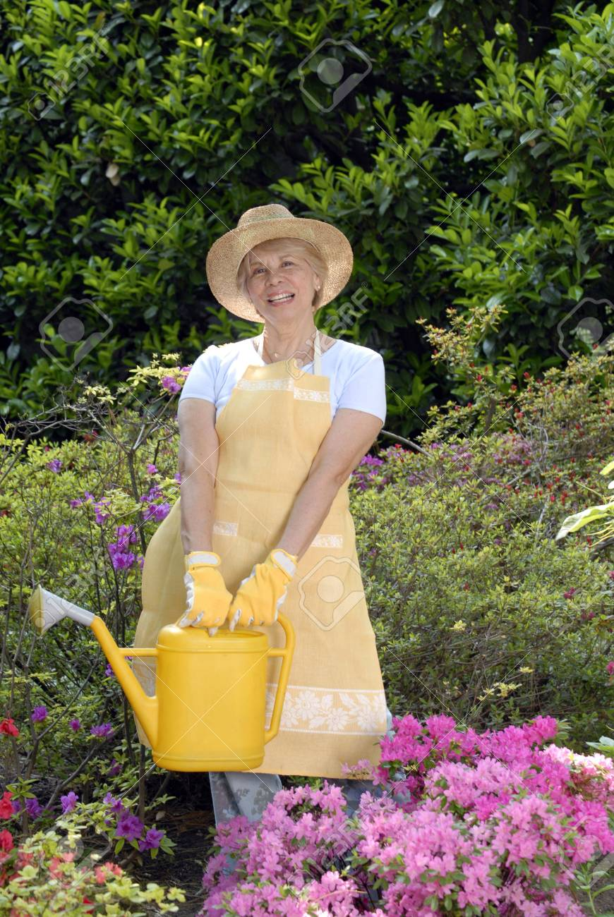 Elderly woman holding a watering can Stock Photo - 22597791