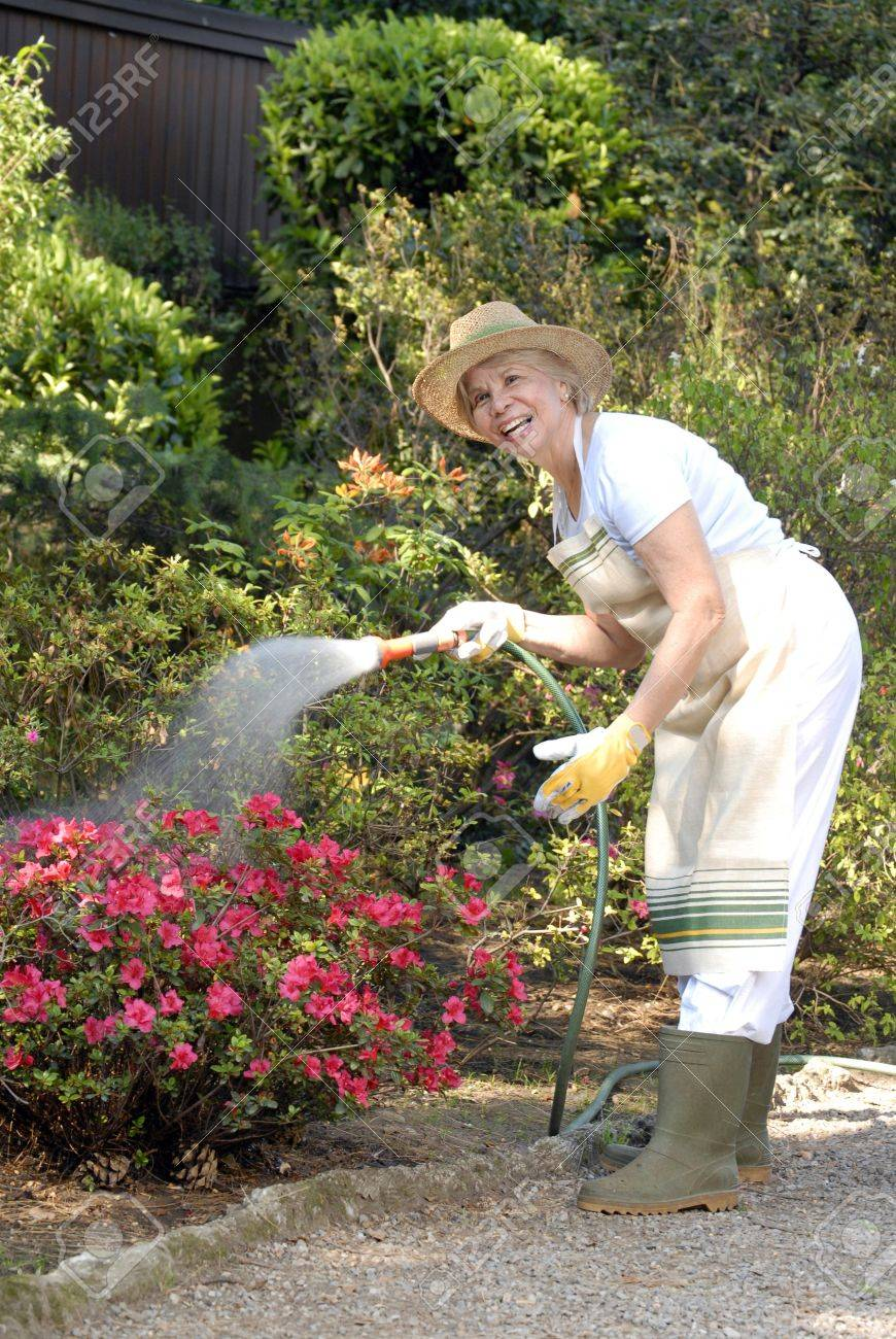 Elderly woman watering the plants Stock Photo - 22597781