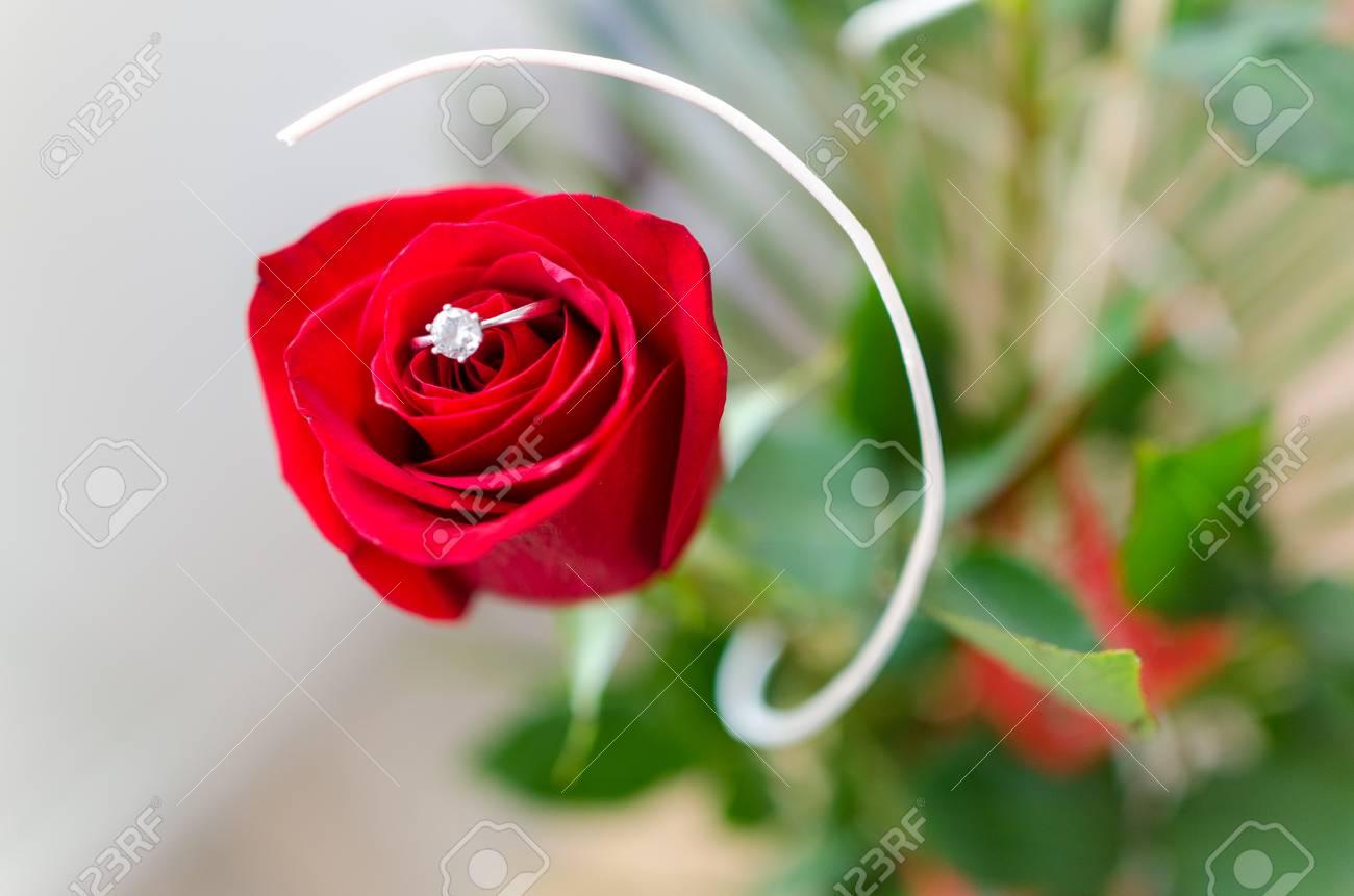 Détail Une En Rose Bague Argent Avec Macro Rouge b6Yg7yf