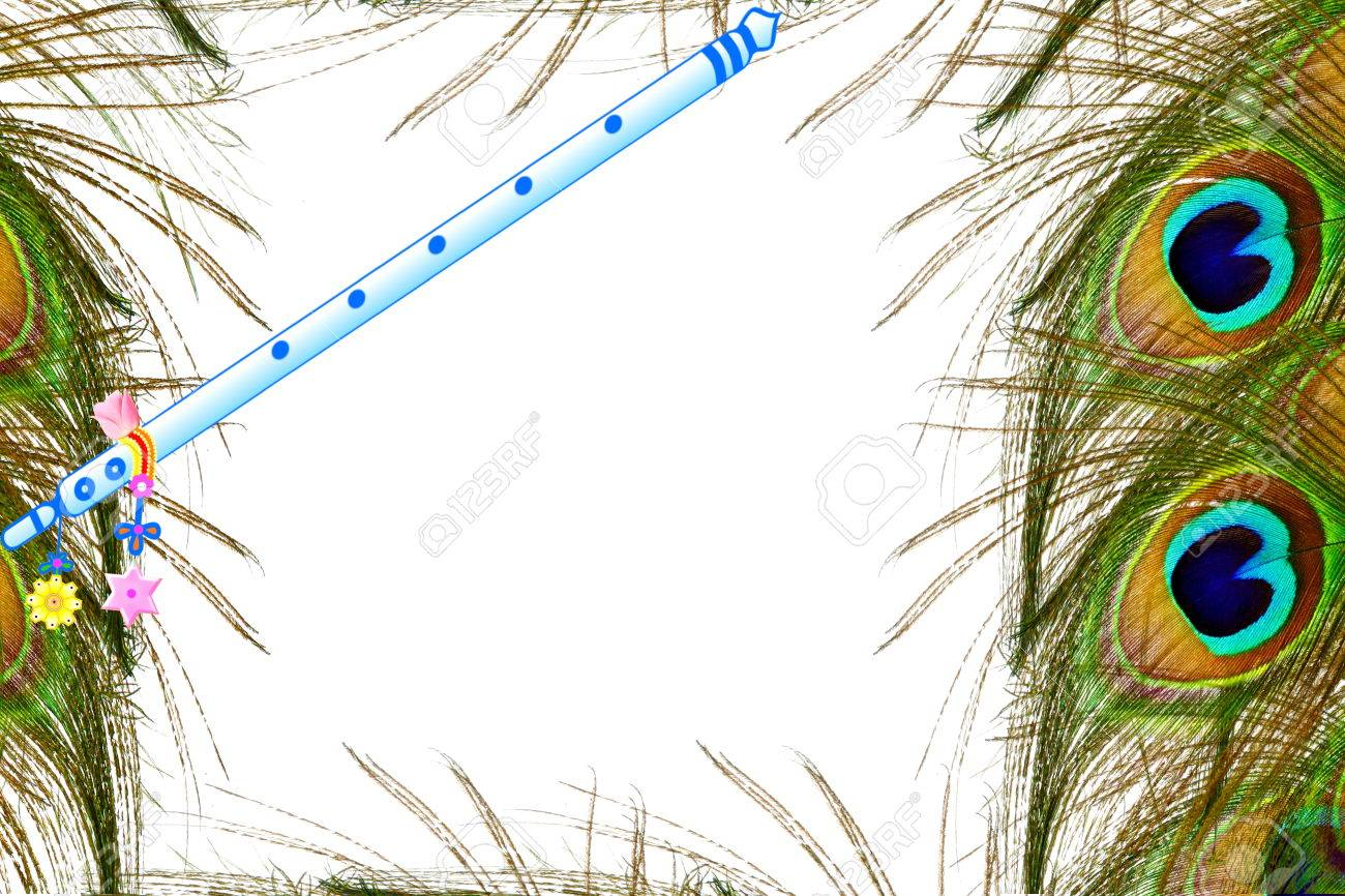 peacock feather and flute over white background with text copy