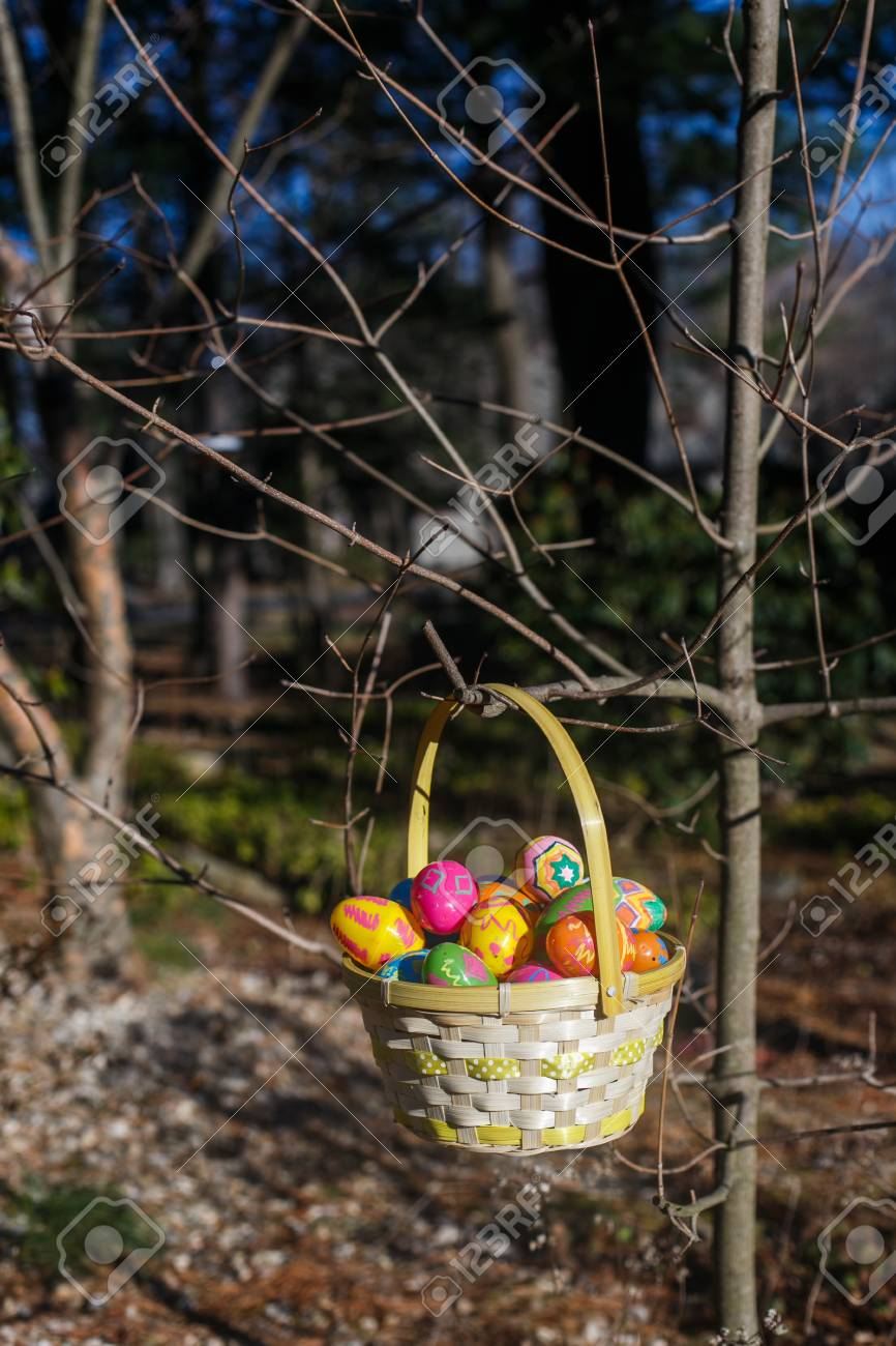 Easter Eggs In The Basket Hang On The Branch Of Tree Stock Photo Picture And Royalty Free Image Image 97361991