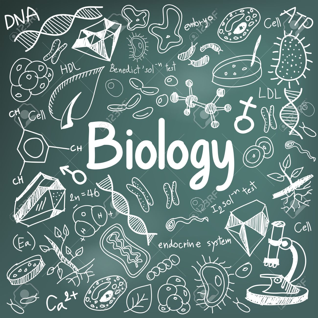 biology science theory doodle handwriting and tool model icon