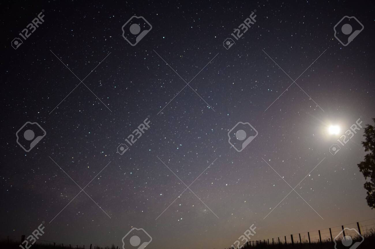 playing with the stars - 135029878