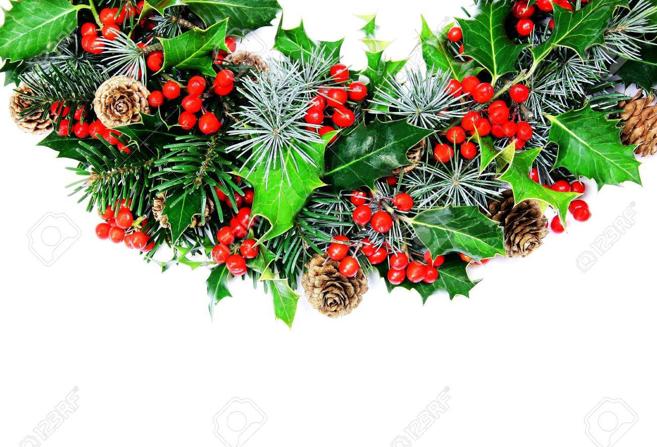 Why is holly a traditional christmas decoration - A Traditional Christmas Wreath Of Natural Holly Pine Cypress And Cones Photographed Over White