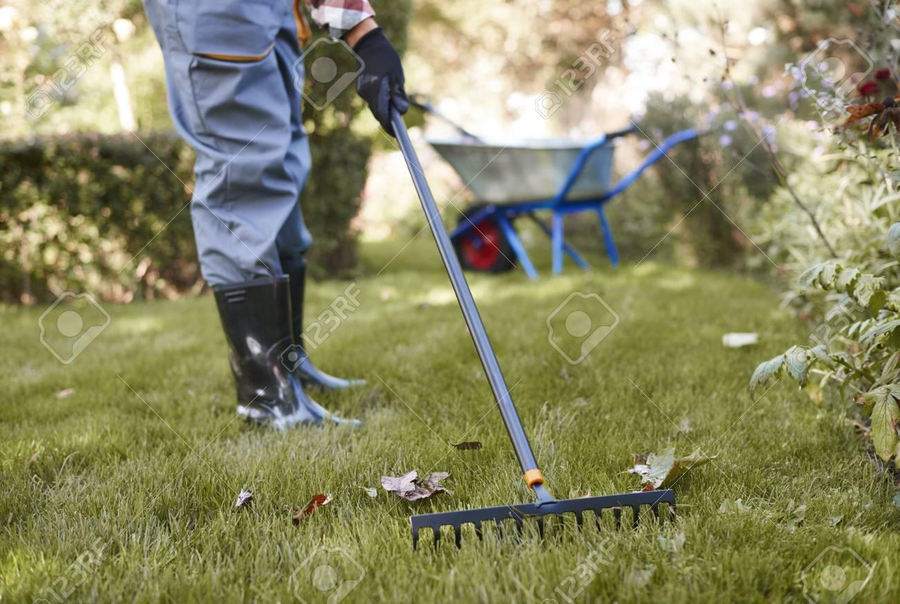 Unrecognizable man raking leaves in the garden - 95117784