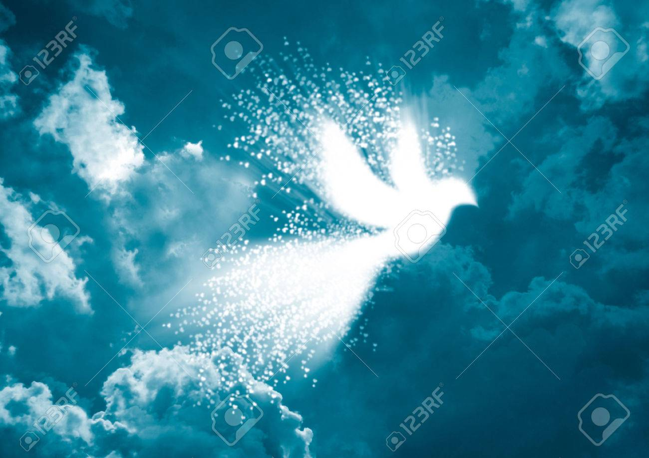 Peace dove- White dove with heart flying in blue sky background Stock Photo - 43015934