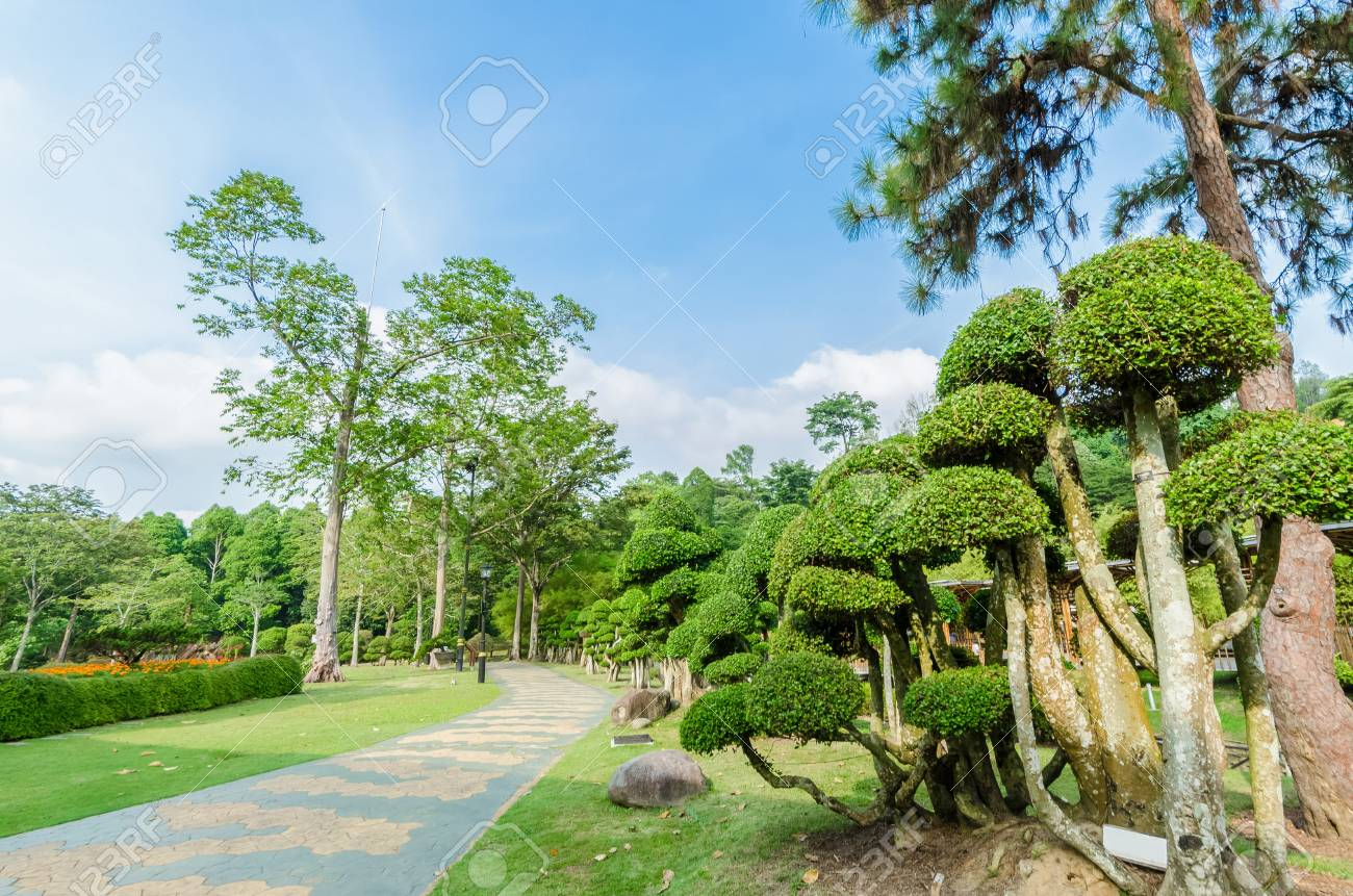 Lake Gardens also known as Kuala Lumpur Perdana Botanical Gardens, it is KL's first large-scale recreational park. - 106951171