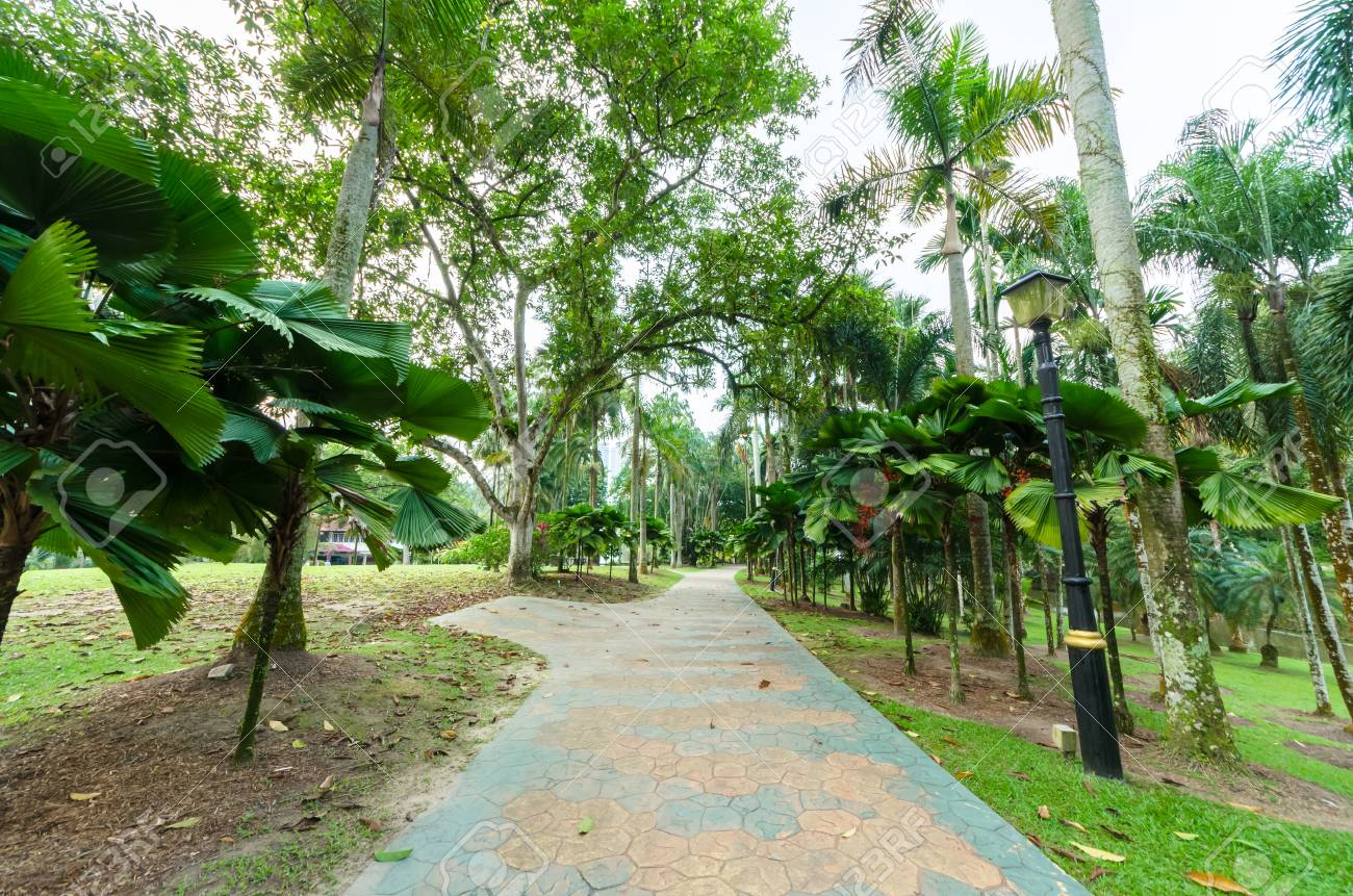 Lake Gardens also known as Kuala Lumpur Perdana Botanical Gardens, it is KL's first large-scale recreational park. - 107566505