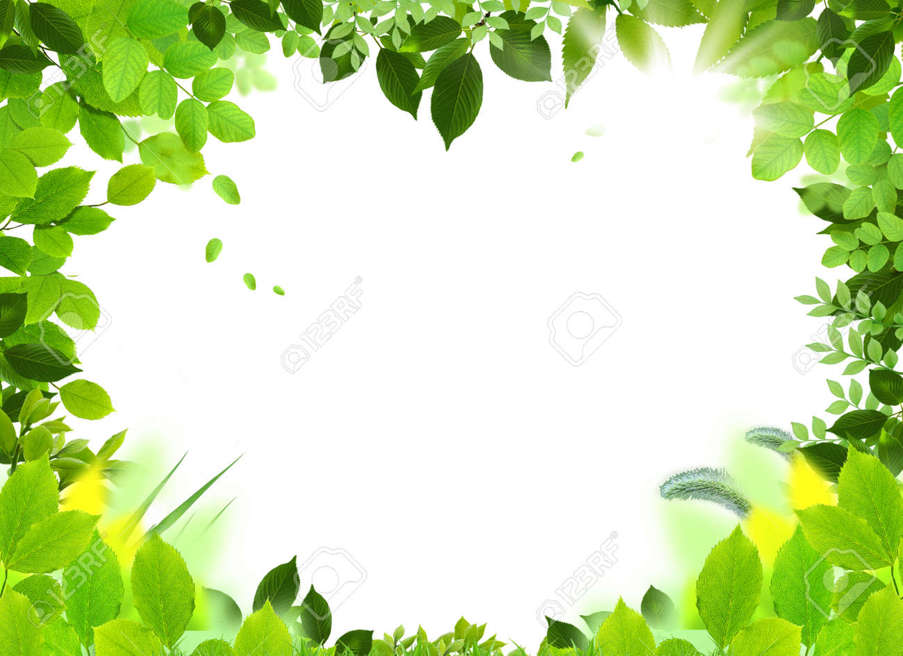 natural design template naturel heart frame beautiful frame stock photo picture and royalty free image image 4768359 natural design template naturel heart frame beautiful frame