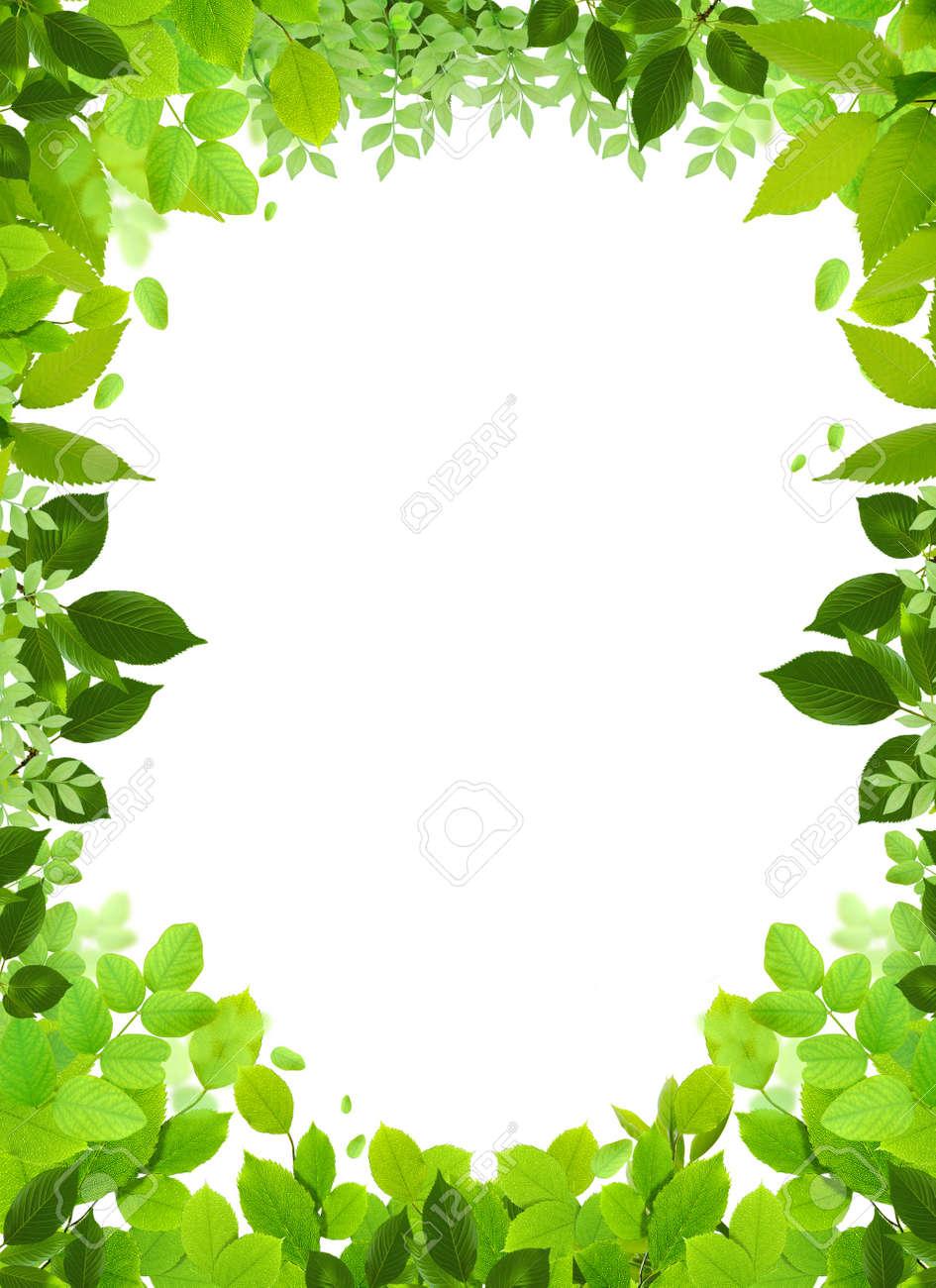 Natural Design Template. Naturel Heart Frame. Beautiful Frame Stock ...