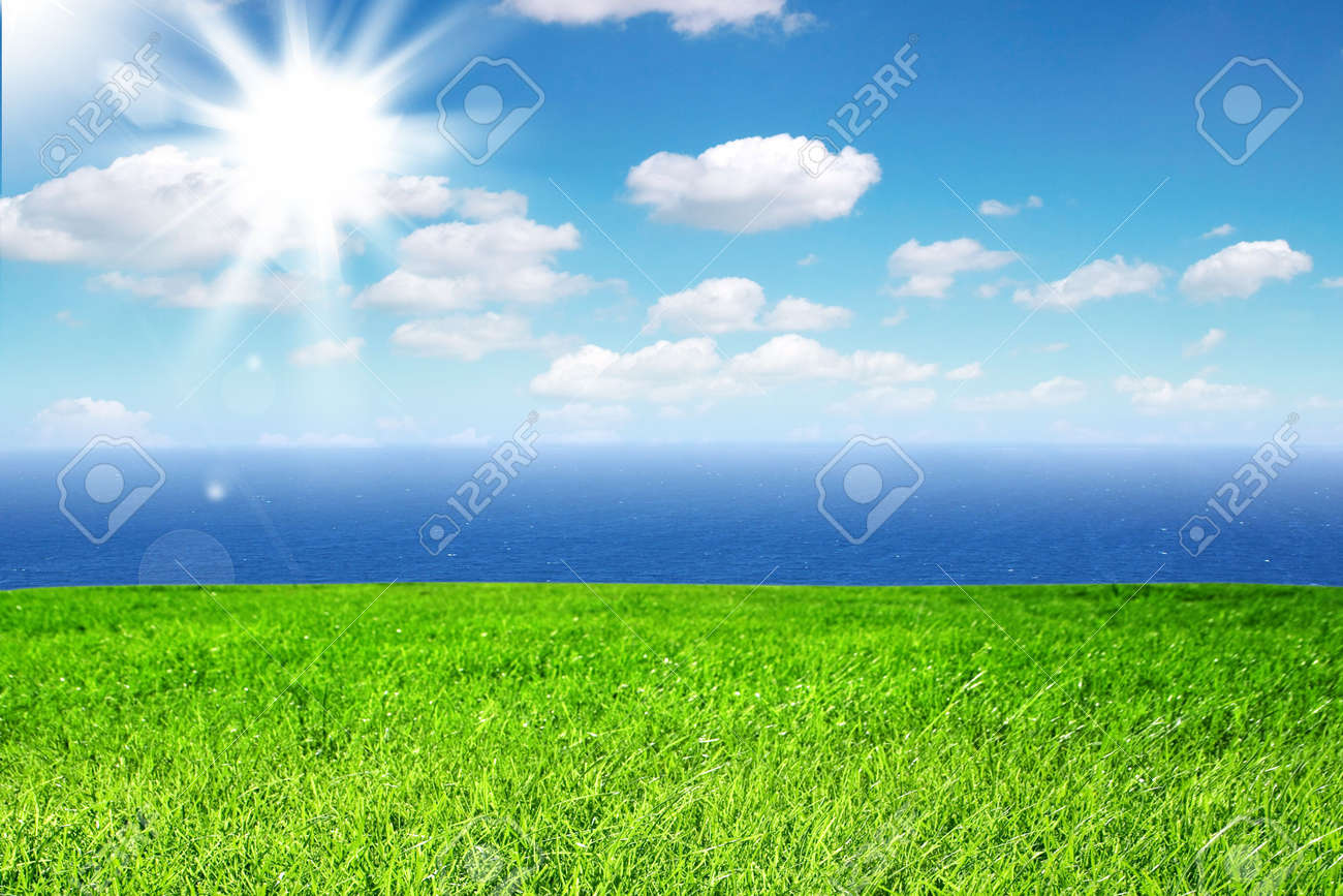 Fresh green grass on bright sunny day and sea in the background Stock Photo - 5117760