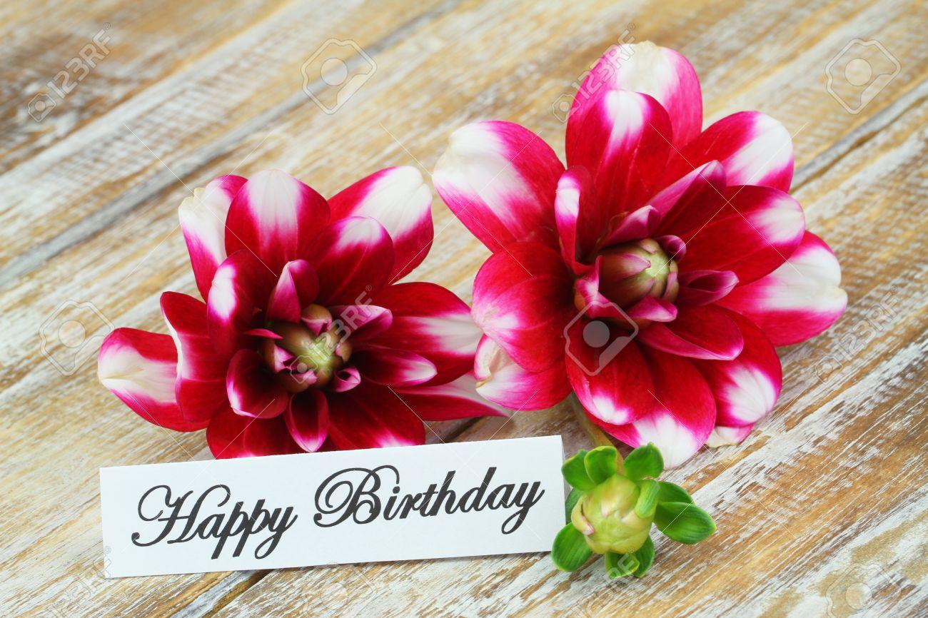 Banque dimages , Carte de joyeux anniversaire avec des fleurs de dahlia
