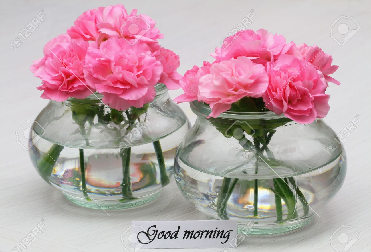 Good Morning Card With Pink Carnation Flowers Stock Photo, Picture ...