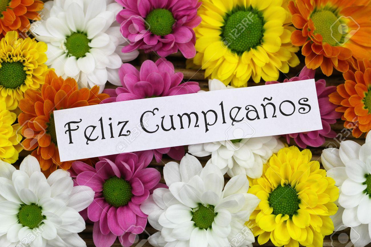 Mardi 30 août 40228894-Feliz-cumpleanoswhich-signifie-joyeux-anniversaire-cartes-espagnol-avec-des-fleurs-color-es-Santini-Banque-d'images