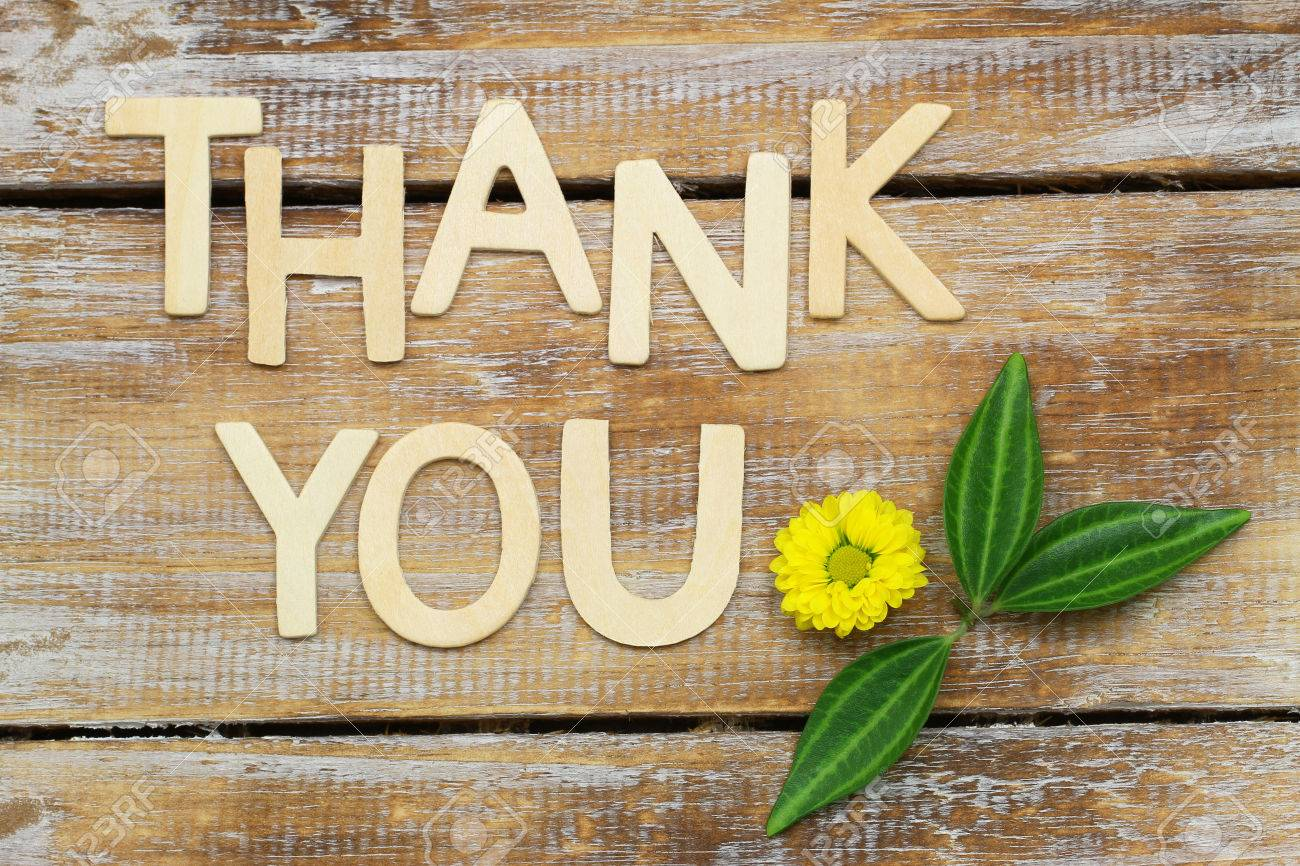 stock photo thank you written with wooden letters and santini flower on rustic wood