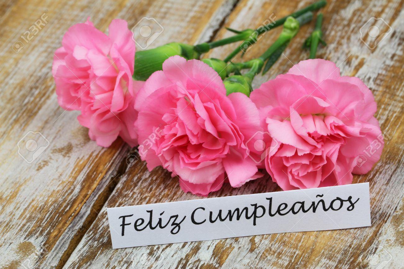 Happy Birthday Feliz Cumpleaños Bon Anniversaire ~ Feliz cumpleanos happy birthday in spanish card with pink carnations