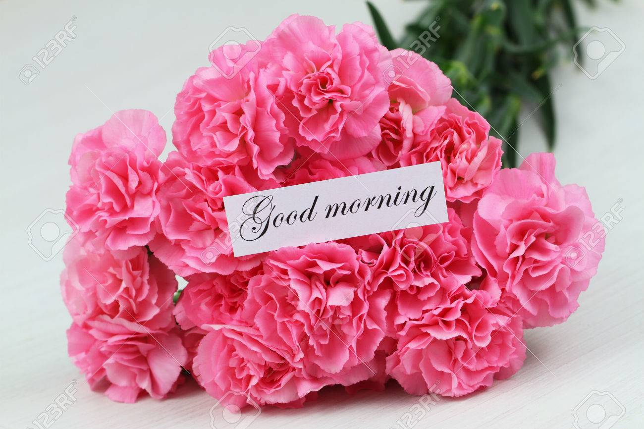Good Morning Card With Pink Carnations Bouquet Stock Photo, Picture ...