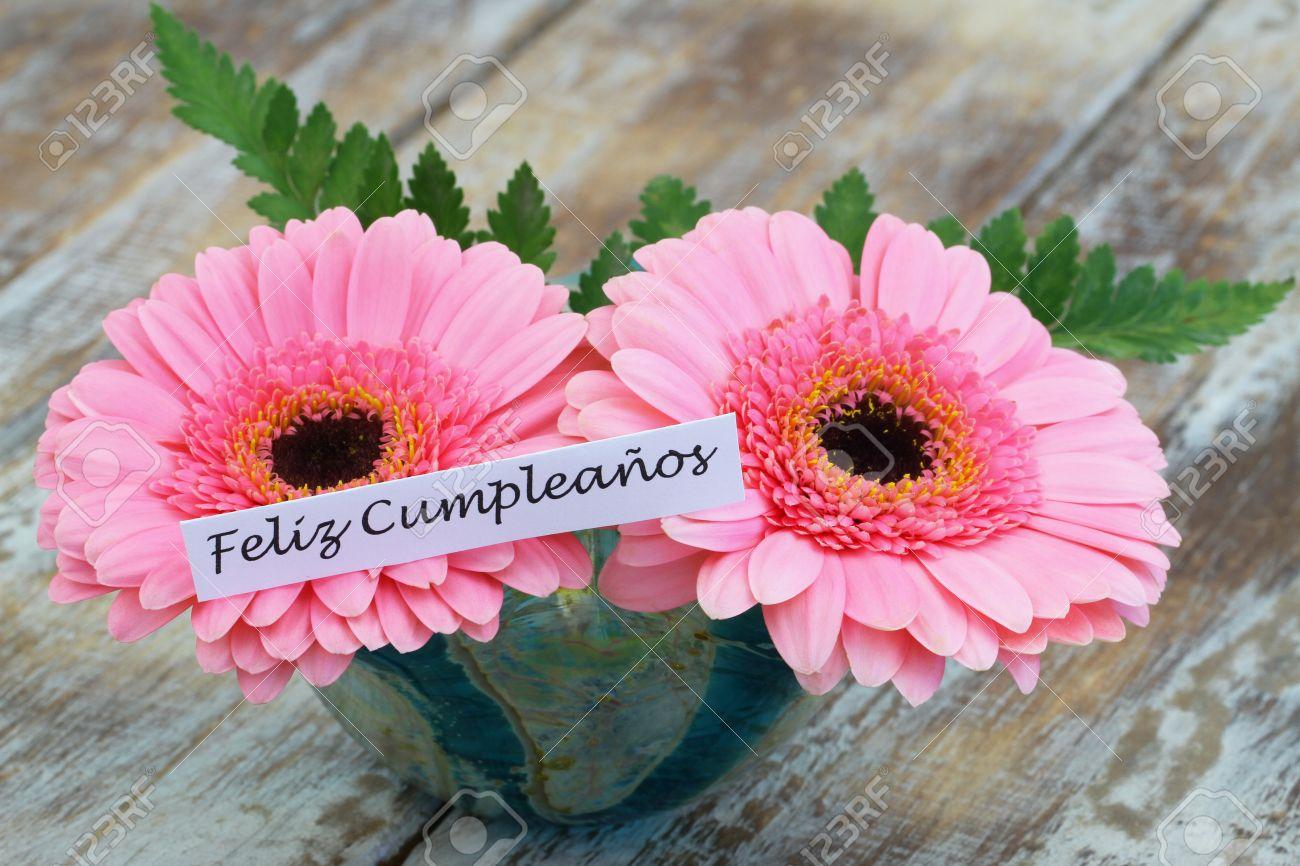 Feliz cumpleanos happy birthday in spanish card with pink gerbera feliz cumpleanos happy birthday in spanish card with pink gerbera daisies stock photo 47660751 izmirmasajfo Choice Image