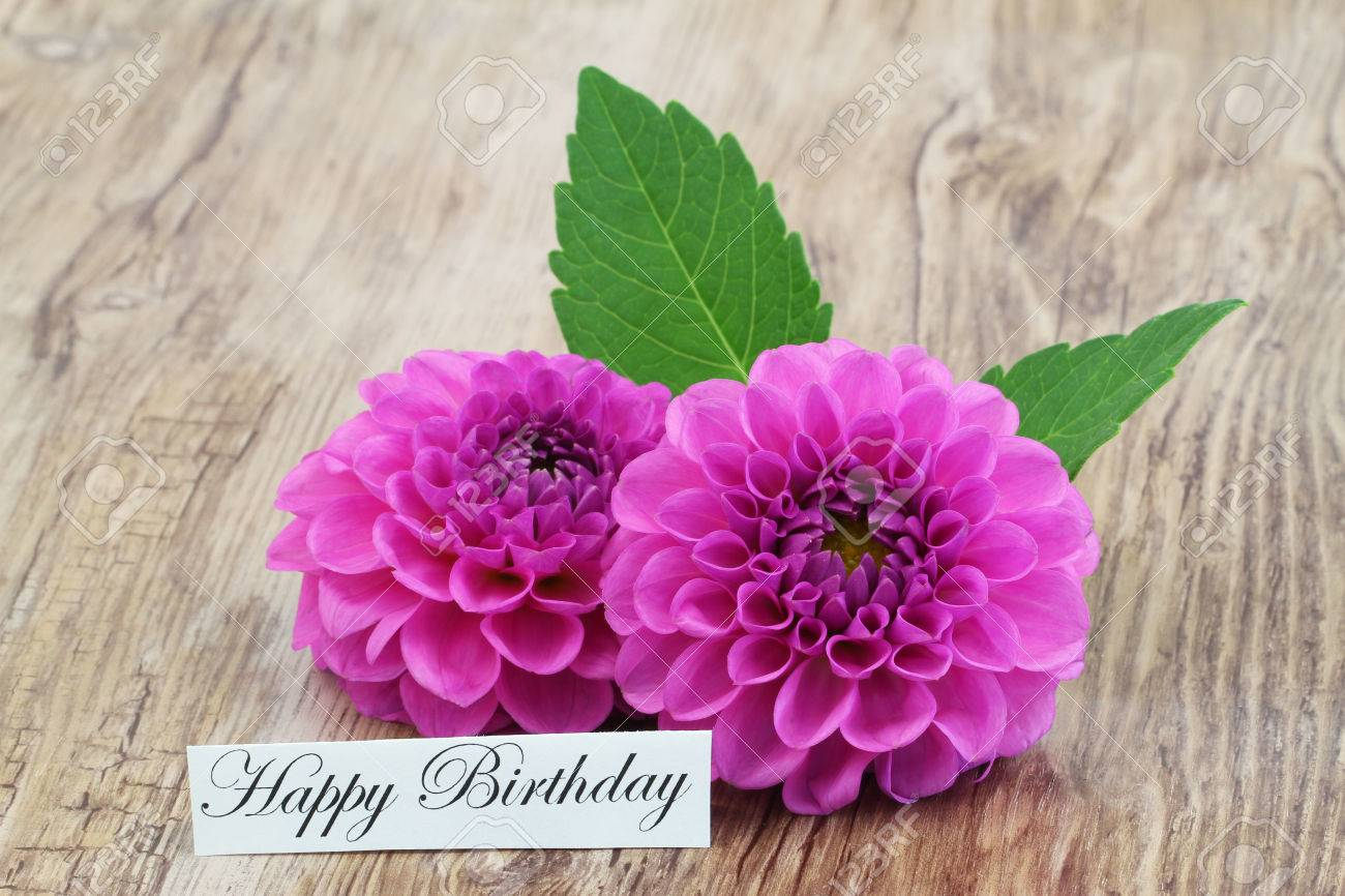 Happy birthday card with two pink dahlia flowers stock photo happy birthday card with two pink dahlia flowers stock photo 70854182 izmirmasajfo